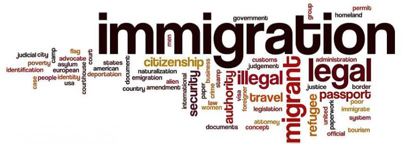 Diary of an Immigration Lawyer